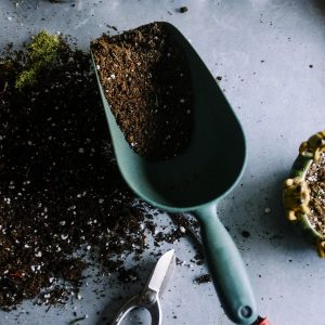 7 vynaliezavých life-hackov pre záhradkárov